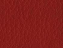ECOPELLE - Ecopelle 35-Rosso
