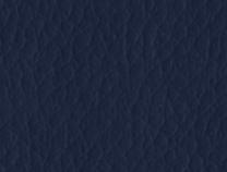 ECOPELLE - Ecopelle 54-Blu