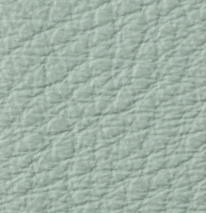 Pelle Anilina 203 Ciment