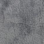 Pelle Anticata 21 Grafite