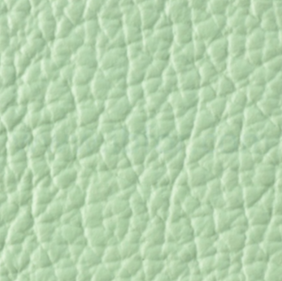 Pelle Smerigliata 445 Emerald